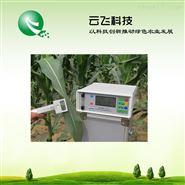 植物光合测定仪检测项目|光合仪价格河南云飞科技