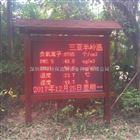顺德森林公园负氧离子24小时监测