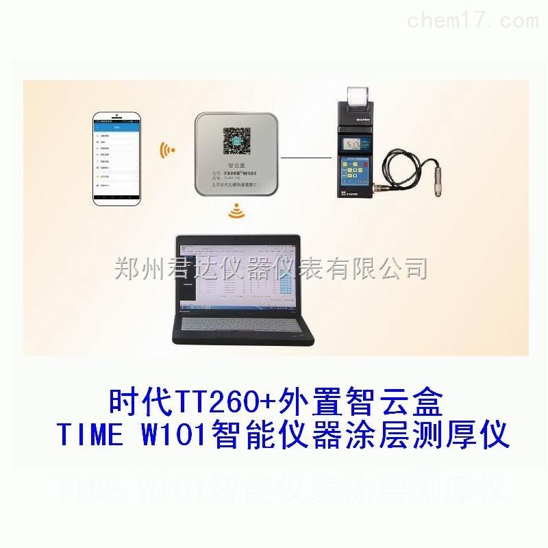 時代TIMEW101智能儀器涂層測厚儀