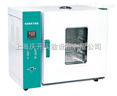 电热鼓风干燥箱(250°C)