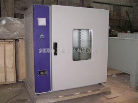FN101电热鼓风恒温干燥箱