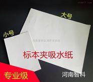 标本吸水纸,滤纸 白色加厚