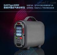 手提泵吸式一氧化碳分析仪
