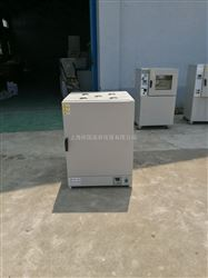 DHG-9240C240L高温烘箱