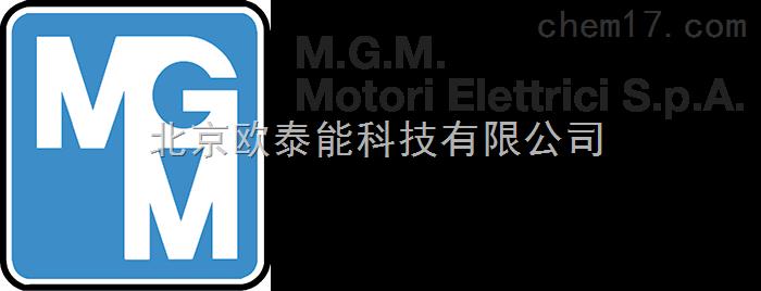 销售mgm Motori Elettric电机 化工仪器网