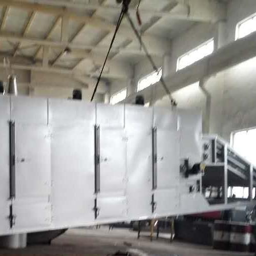 DWT系列脱水蔬菜带式干燥机