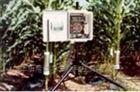 美国Dynamax Flow32-1K包裹式植物茎流计