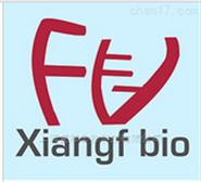 ME-180 人子宮頸表皮癌細胞