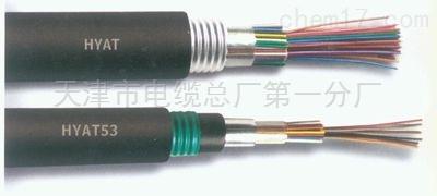 低烟无卤阻燃通信电缆WDZ-HYA53