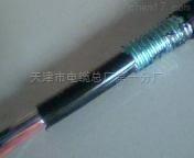 铠装通信电缆HYA53(铠装电话电缆HYA53)