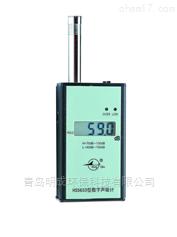 恒升 -HS5633型噪声计监测仪