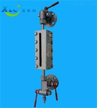 XC-B49X-25锅炉液位计透反射式双色水位计厂家