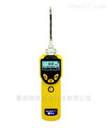 美國華瑞 PGM-7320VOC檢測儀