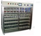 JW-BIM-1724BO宁夏监控老化测试试验仪器设备