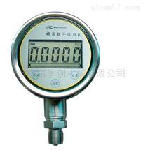 RT-CWY100精密数字压力表