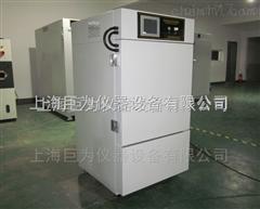 JW-YPWDX-120GS天津150L药品稳定性试验箱