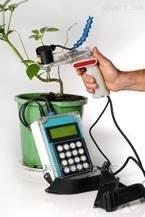 德国STEPS叶绿素荧光仪的应用