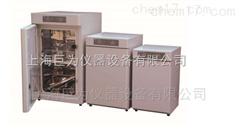 天津JW-3802電熱鼓風幹燥箱