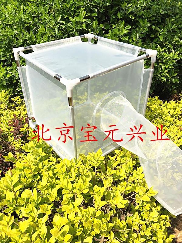 折叠式养虫笼、可拆卸昆虫笼By