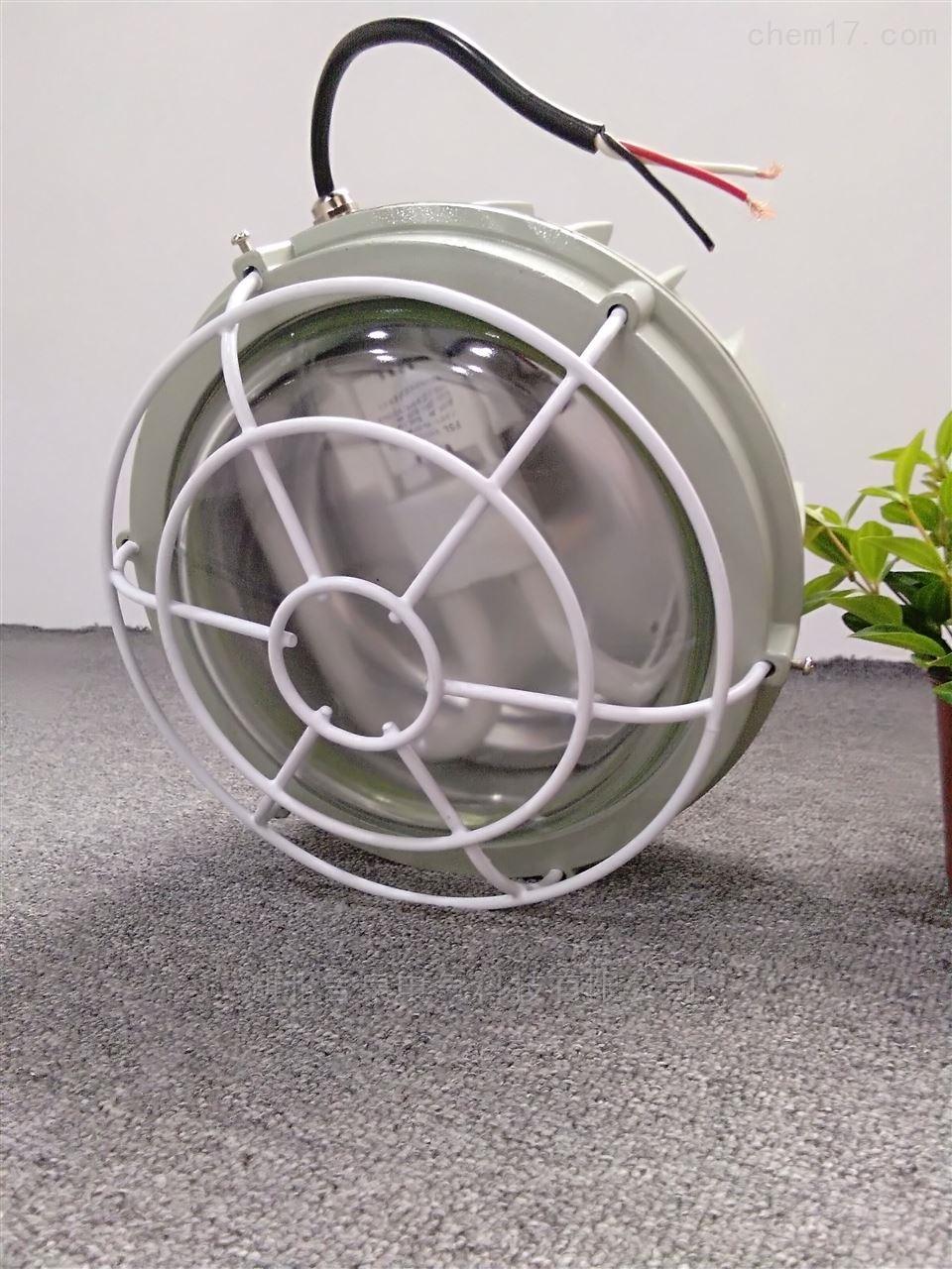 BAY54一体式蓄电池固定照明防爆防腐荧光灯