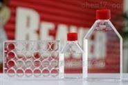 TCT细胞培养板 6孔板 40106