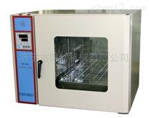RT-GZX-9030电热鼓风干燥箱