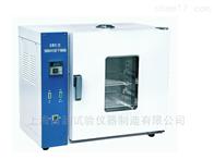 101-1HA上海雷韵 101-1HA强制对流干燥箱