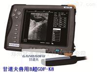 马用B超发情测孕方法,驴用B超测孕图像判断