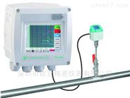 CS DS400 压缩空气和气体流量计