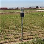 无线自动土壤水分监测系统