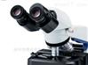 奥林巴斯BX46人体工程学显微镜