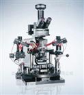 BX61WI/BX51WI 载物台固定式显微镜