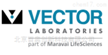 Vector labs代理