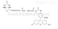 聚乙二醇衍生物FITC-PEG-Biotin MW:2000荧光素PEG生物素