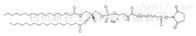PEG衍生物DSPE-PEG-NHS MW:2000磷脂聚乙二醇活性酯