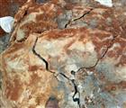 福州岩石胀裂剂,福州静态膨胀剂工厂,无声破碎剂厂家