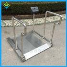 不锈钢材质体重透析秤
