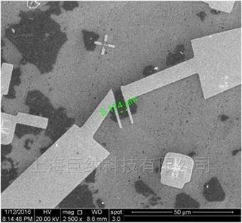 定制单层二硫化钼-带电极