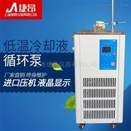 上海捷昂低温冷却液循环泵DLSB-20.30.50.80