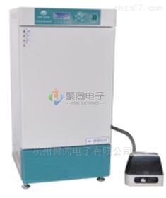 武汉智能人工气候箱RGX-250B温度湿度箱