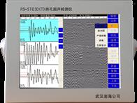 RS-ST03D(T)跨孔超声检测仪/多通道声波检测