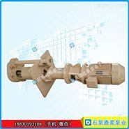 300TV-SPR液下渣浆泵立式泵离心泵节能高效