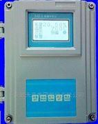 ZR22G-100氧化锆氧分析仪