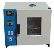 微控电热恒温鼓风干燥箱
