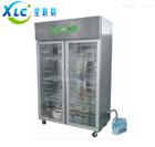 XCHW-260BXCHW-300A智能恒温恒湿箱XCHW-1000生产厂家