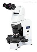 奥林巴斯荧光显微镜