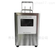 RGK-300便携式VOC大气采样器(2路)