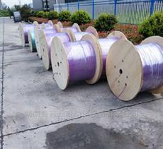 哪里卖西门子紫色电缆
