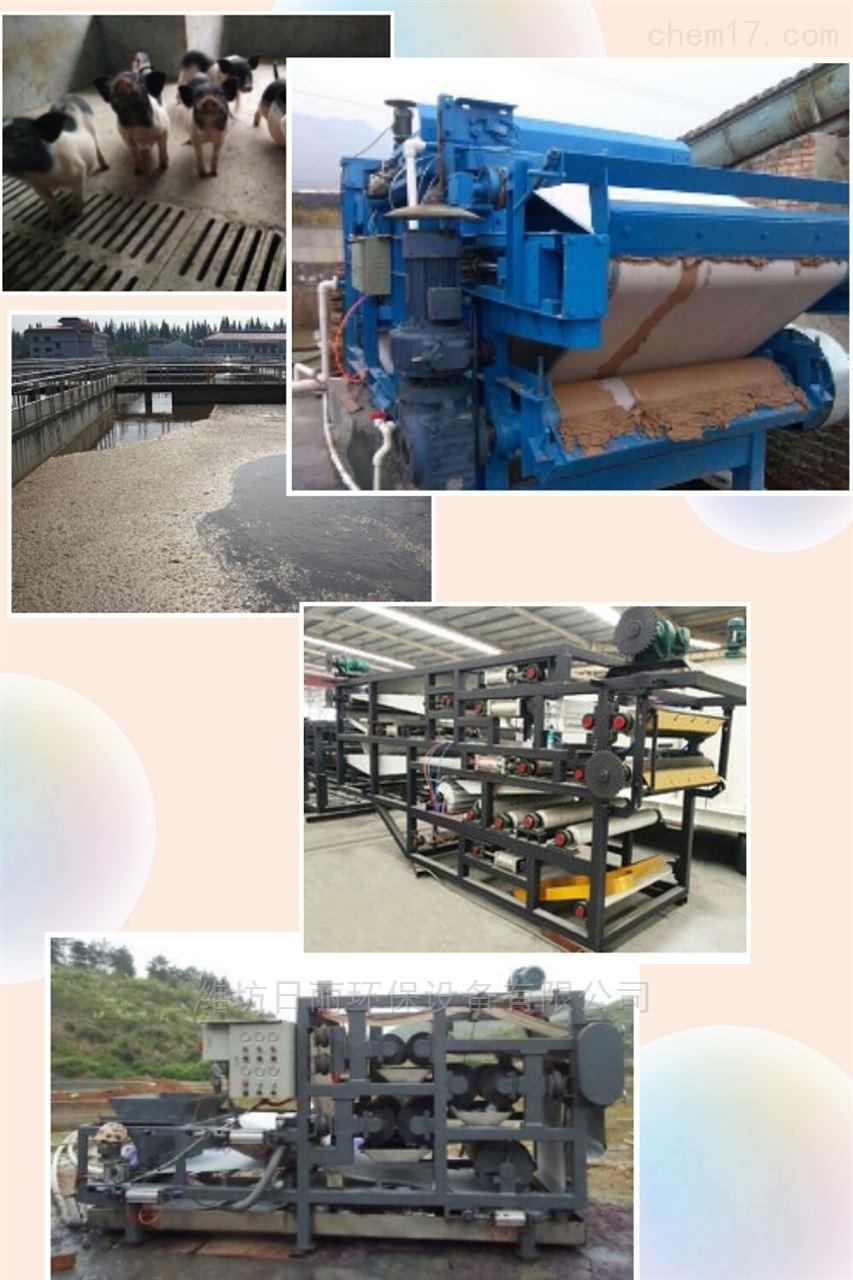 四川省香猪养殖场污泥脱水设备RL带式压滤机