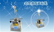 SLM-250微型高压反应釜